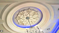 Ceiling Roses and Domes
